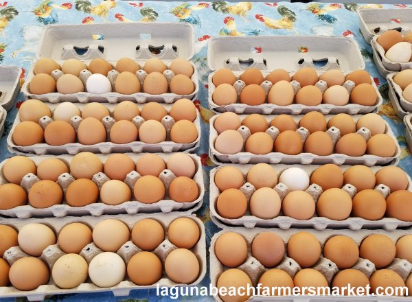 organic free range eggs de le ranch