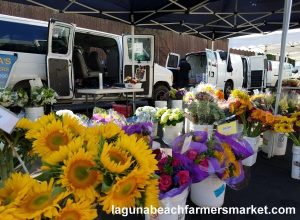 fresh flowers laguna beach farmers market marias flower