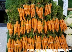 organic vegetables laguna beach farmers market carrots martinez farms